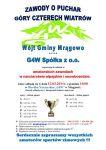 Puchar G4W