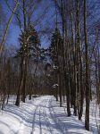Szlaki narciarstwa biegowego w Mrągowie