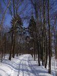 Pobiegaj na nartach w Mrągowie